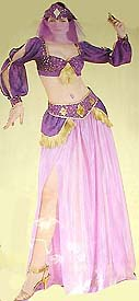 Ladies' Cinema Secrets Harem Girl purple sheer/glitter crop long sleeve top with gold accents