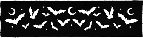 Too Fast Moons and Bats sew on printed patch