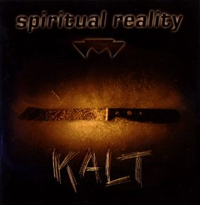 Spiritual Reality electronic-independent-pop CD Kalt